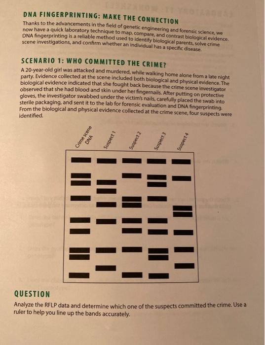 Solved Dna Fingerprinting Make The Connection Thanks To Chegg Com