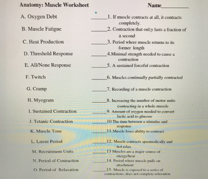 Solved: Anatomy: Muscle Worksheet Name A. Oxygen Debt B. M ...