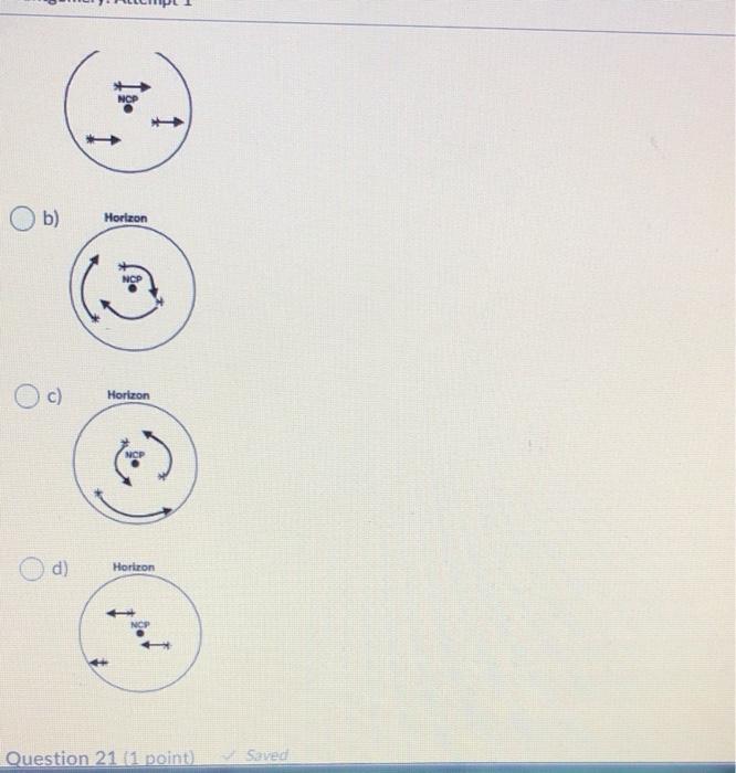 1 1 Ob) Horizon c) Horizon NCI d) Horizon Question 21 [1 point). Saved