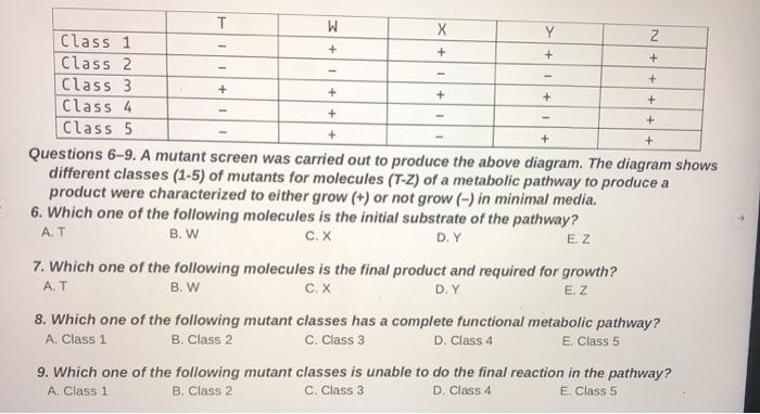 Solved: + II +++NI Class 1 Class 2 Class 3 Class 4 Class 5