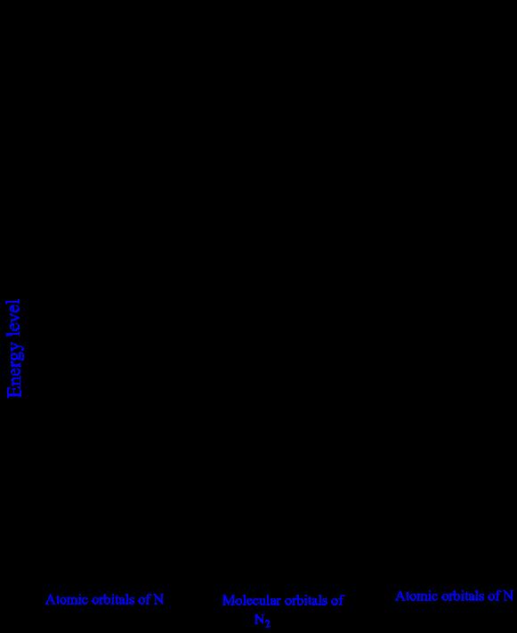 Molecular Orbital Diagrams N2 Manual Guide