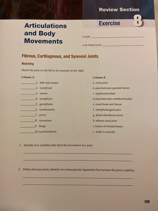 Solved Review Section Exercise Articulations And Body Mov Chegg Com C) joints with minimal movements special arthrology. review section exercise articulations