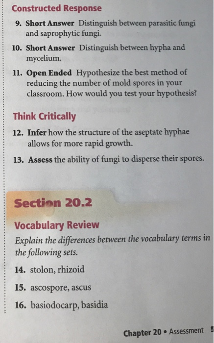 Solved: Chapter 20 Assessment Understand Key Concepts 17