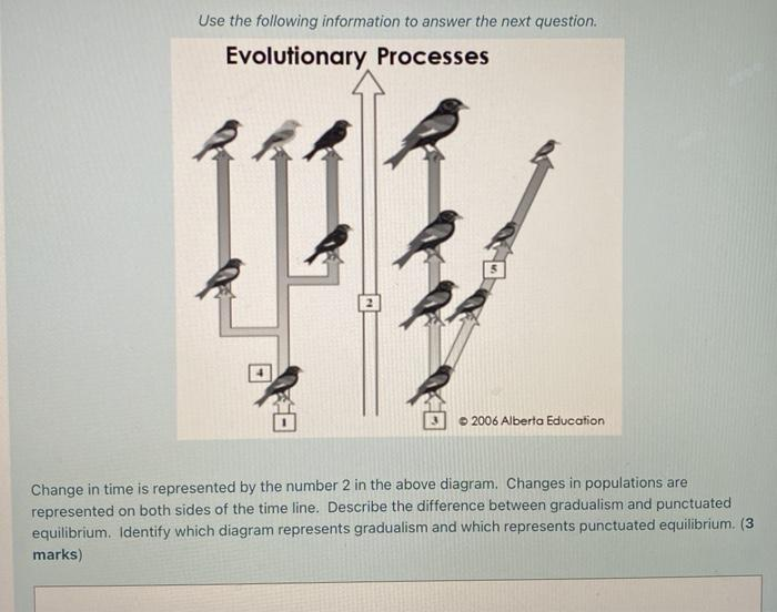 Use the following information to answer the next question. Evolutionary Processes © 2006 Alberta Education Change in time is