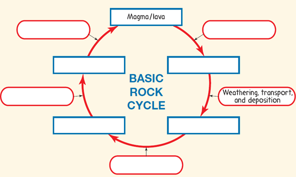 30 Rock Cycle Diagram To Label