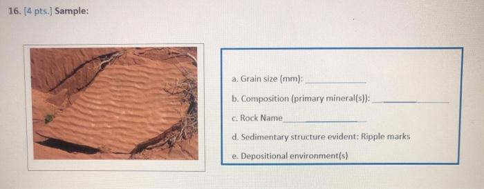 16. [4 pts.) Sample: a. Grain size (mm): b. Composition (primary mineral(s)): c. Rock Name d. Sedimentary structure evident:
