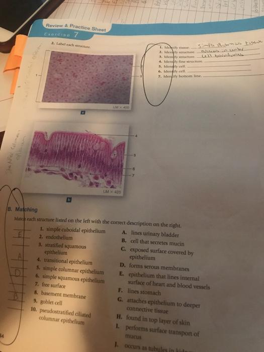 Multi Funktions PU Leder Stift Bleistift Fern Bedienung Tissue Box Abdeckun T1Q4